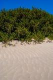 Inny widok elafonisi plaża, Crete, Grecja Zdjęcia Royalty Free
