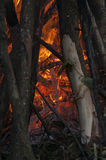 Inom av en firecamp Fotografering för Bildbyråer