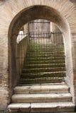 Inom coliseumen i Rome Lazio, Italien Royaltyfri Fotografi