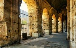 Inom Colosseumen (Coliseum) i Rome royaltyfri foto