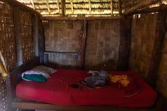Inom ett hus för volontärer för fredkår i Fiji royaltyfri bild