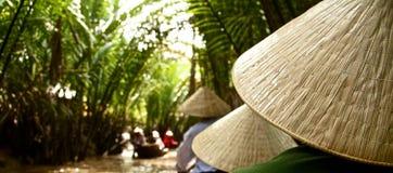 Inom mangroven av den Mekong deltan Vietnam Fotografering för Bildbyråer