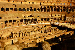 Inom Roman Colosseum Royaltyfri Fotografi