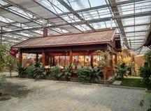 Inomhus konstgjord trädgård Arkivbilder