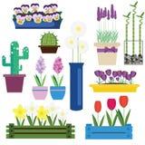 Inomhus och trädgården blommar i krukavektoruppsättning royaltyfri illustrationer