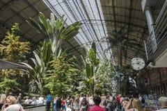 Inomhus Palacio de Cristal, Madrid Royaltyfri Fotografi