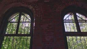 Inomhus sikt till den utomhus- skogen via gammalt förstört fönster lager videofilmer