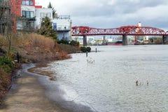 Inondant à Portland, l'Orégon image stock