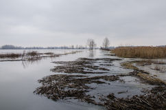 Inondation Image stock