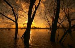 Inondation Photographie stock libre de droits