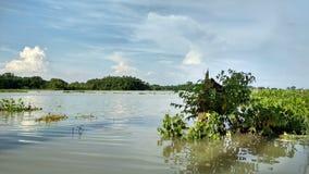 Inondation avec la beauté Photographie stock libre de droits
