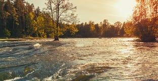 Inondation Côte de rivière, Kotka, Finlande Photo stock