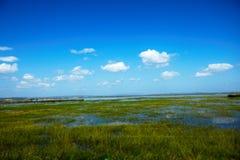 Inondation 2013 d'été sur la prairie hulunbeier de concession photo stock