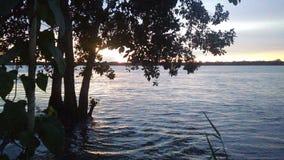 Inondation d'Amazone Photo libre de droits