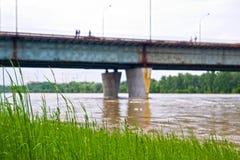 Inondation de fleuve de Vistula Photographie stock libre de droits