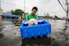 Inondation de Nonthaburi dans le mode de vie de la Thaïlande 2011-The des personnes au MAS Photo stock