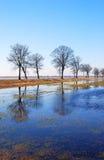 Inondation de source Images stock