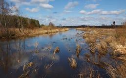 Inondation de source sur le fleuve Photo stock