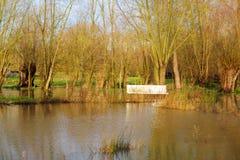 Inondation en Flandre Image libre de droits