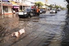 Inondation en Thaïlande Images libres de droits