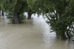 Inondation sur Danube Images stock
