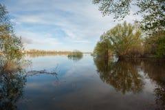 Inondation sur la rivière Akhtuba Images libres de droits