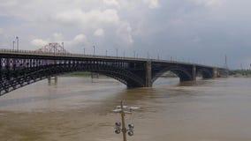 Inondation sur le fleuve Mississippi au Saint Louis de Louis de saint, Etats-Unis - 19 juin 2019 clips vidéos