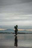 Inondations du Pakistan et évaluation de Buner Image stock