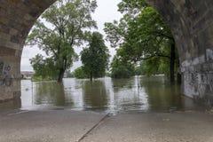Inondations Prague en juin 2013 - île de Stvanice Image stock