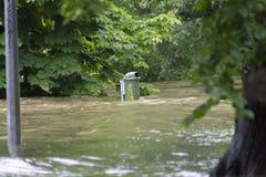 Inondations Prague en juin 2013 Photos stock