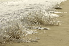 Inondazione 3 Immagine Stock Libera da Diritti