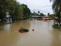 Inondazione al villaggio immagini stock libere da diritti