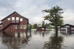 Inondazione del fiume Immagini Stock