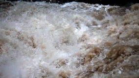 Inondazione del fiume stock footage