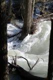 Inondazione del Montana Fotografia Stock