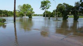 Inondazione del ramo paludoso di fiume di ragli Fotografia Stock Libera da Diritti