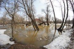 Inondazione della primavera Fotografie Stock
