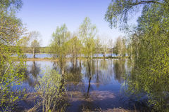 Inondazione della primavera Fotografia Stock Libera da Diritti