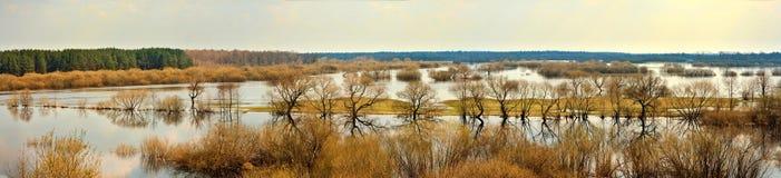 Inondazione della primavera Immagini Stock Libere da Diritti