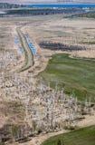 Inondazione della primavera in Altai immagine stock