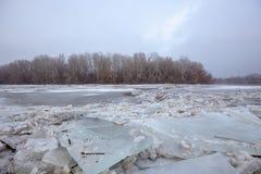 Inondazione della primavera, banchise sul fiume Fotografia Stock