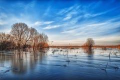 Inondazione della primavera nel campo Immagini Stock Libere da Diritti