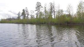Inondazione della primavera sul fiume siberiano stock footage