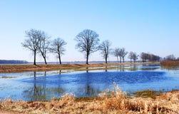 Inondazione della sorgente fotografia stock
