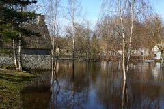 Inondazione della sorgente Immagine Stock