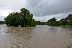 Inondazione 2013 di Calgary Immagini Stock Libere da Diritti