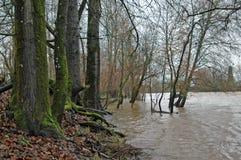 Inondazione di inverno Immagine Stock