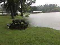 Inondazione di Livingston del lago Fotografie Stock Libere da Diritti