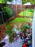 Inondazione di uragano Immagini Stock Libere da Diritti