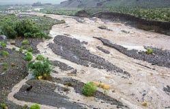 Inondazione dopo una tempesta della pioggia immagini stock libere da diritti